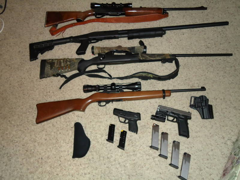 remington, winchester, ruger, taurus, springfield